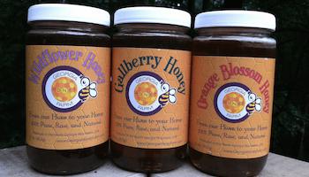 Georgia Honey Farm Three pack sampler